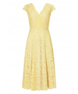 Jacques Vert Lace Godet Dress Multi Yellow Dresses