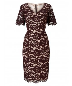 Jacques Vert Opulent Lace Dress Multi Brown Dresses