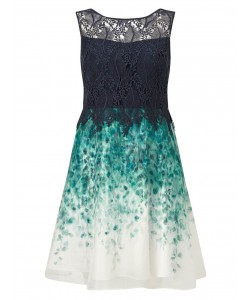 Jacques Vert Petite Lace Organza Dress Multi Navy Dresses