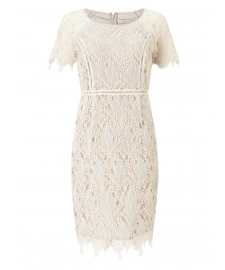 Jacques Vert Petite Leaf Lace Dress Mid Neutral Dresses