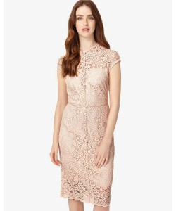 Phase Eight Becky Lace Dress Cameo Dresses