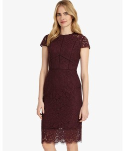 Phase Eight Dana Lace Dress Port Dresses