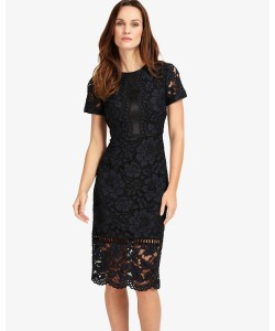 Phase Eight Darena Lace Dress Navy Dresses