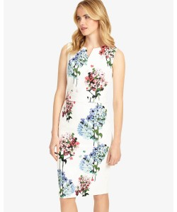 Phase Eight Hydrangea Print Dress Multi-coloured Dresses