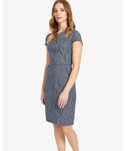 Phase Eight Magda Stripe Dress Blue/White Dresses