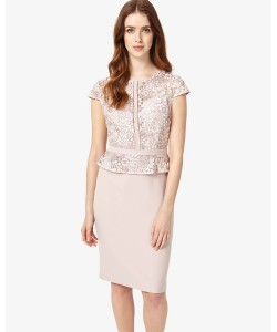 Phase Eight Mia Lace Dress Petal Dresses