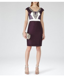 Reiss Lianora Berry/deep Amethyst Embellished Dress