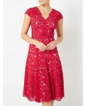 Jacques Vert Lace Godet Dress Multi Red Dresses