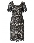 Jacques Vert Leaf Lace Dress Multi Black Dresses 10044330 | jacquesvertdressuk.com