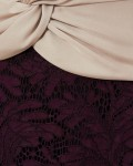 Phase Eight Coralie Lace Dress Champagne/Dark Garnet Dresses