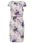Phase Eight Effie Print Dress Multi-coloured Dresses