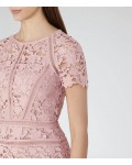 Reiss Orchid Iris Lace Dress